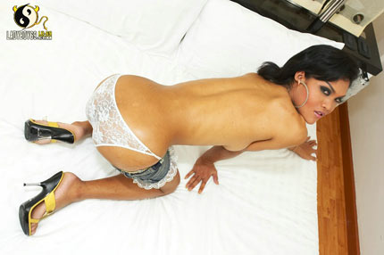 Tight Ass Ladyboy Ming
