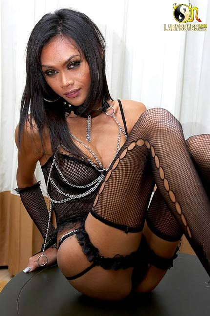 Dominate you with her huge ladyboy cock